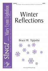 winter reflections bruce tippette